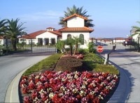 Beautiful landscaping at gated community of High Grove Orlando Florida