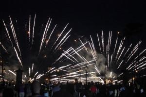 Picture of fieworks taken at Epcot Disney World Florida