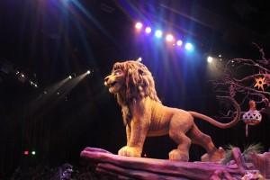 Simba at the Lion King show at Animal Kingdom Florida